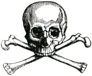 What is the significance of the skull in Freemasonry symbolism?